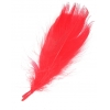 "Feathers Goose 5-7"" Red"